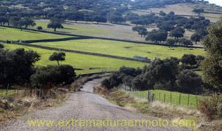 carretera a Bodonal de la Sierra