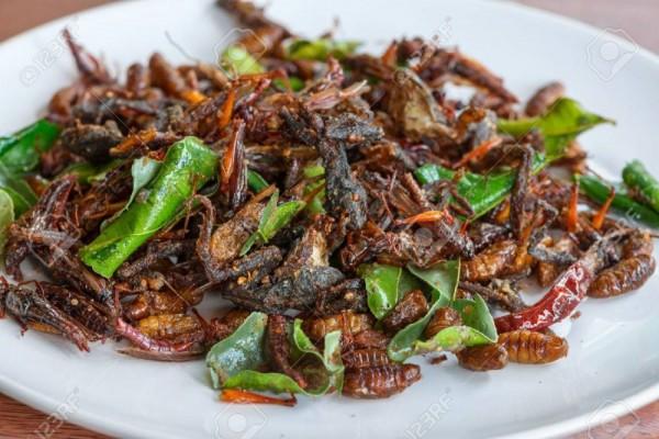 7 Kuliner Ekstrem Thailand Ini Kaya Gizi, Kamu Berani Nyicipi?