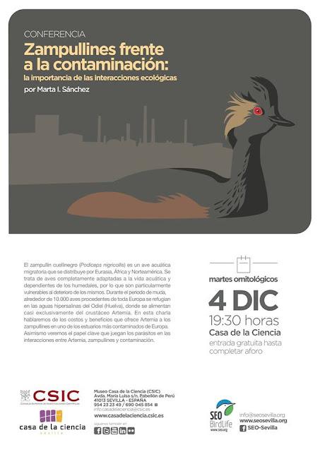 Conferencia: Zampullines frente a la contaminación. Por Marta I. Sánchez, 4 de Diciembre 2018. Grupo Local SEO-Sevilla.