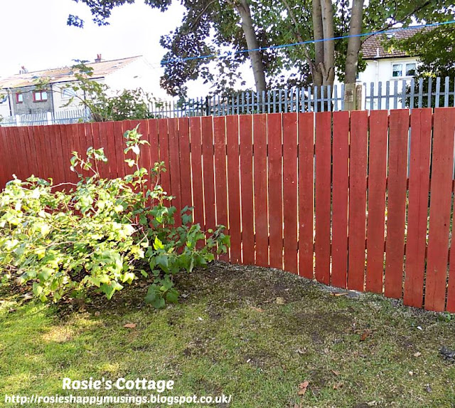 Hubby's fabulous fence building work