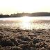Pesquisadores alertam que água do açude Boqueirão pode envenenar população