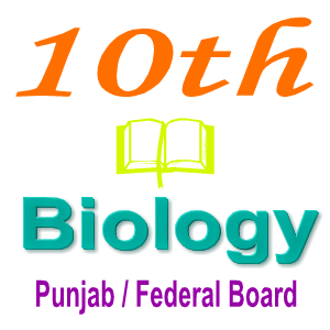 Punjab Board Biology Short And Long Questions Notes 10th Class Ch 11