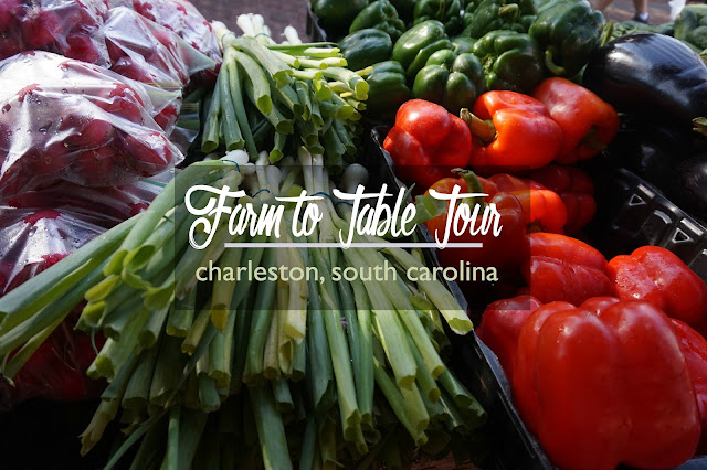 Farm to Table Tour in Charleston SC Historic District: Best Food Tour in Charleston? | CosmosMariners.com