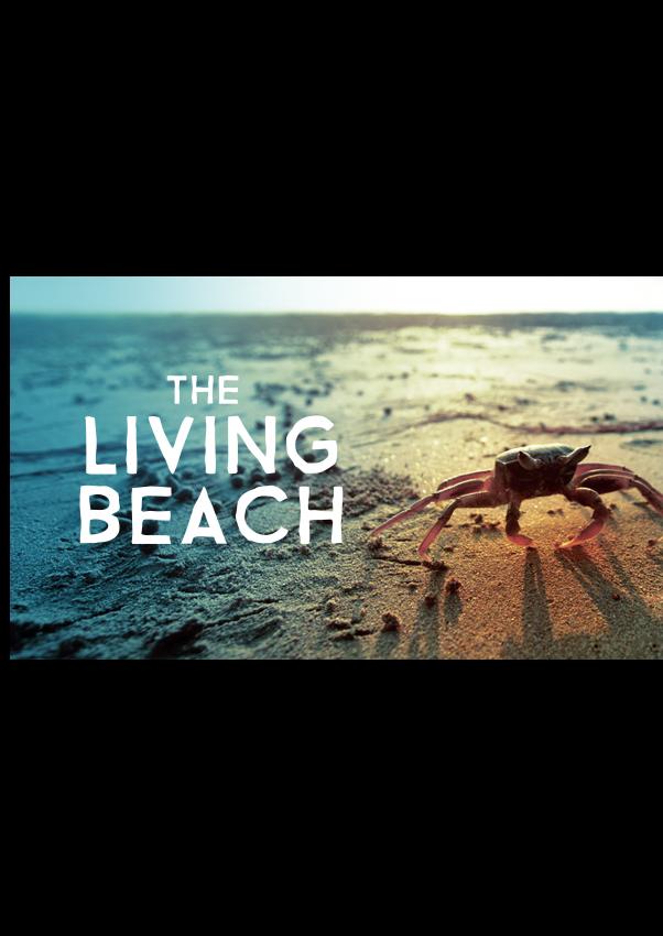 The Living Beach - Season 1