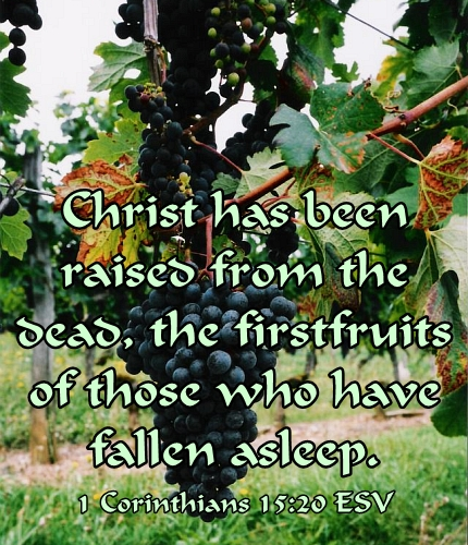 Christ the Firstfruits