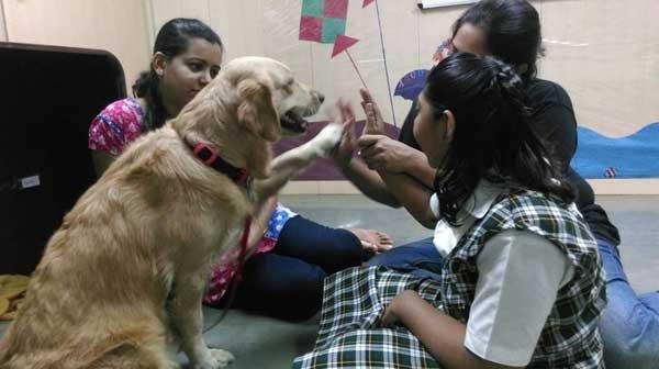 Terapeuta assistida por animais