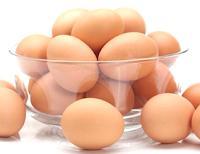 khasiat-manfaat-dan-kandungan-gizi-telur-untuk-kesehatan