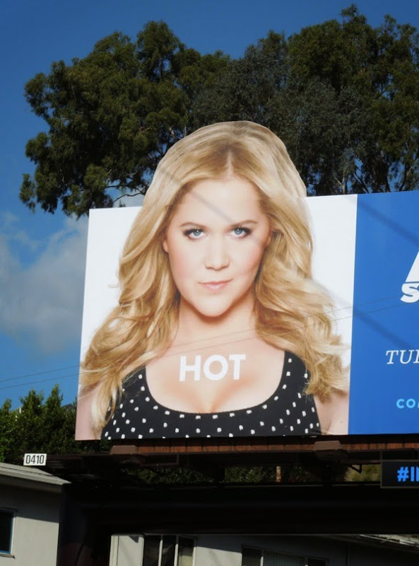 Inside Amy Schumer season 2 Hot billboard