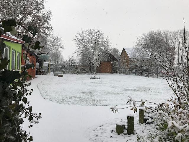Wintergarten Blick Garten  Winter