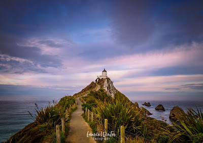 Lighthouse, New Zealand, Nugget Point, NZ, Otago, Southland, Kaka Point
