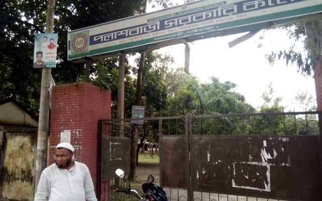 পলাশবাড়ী সরকারি কলেজের মেহগনি গাছ উধাও তদন্ত কমিটি গঠন