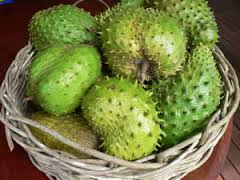 Benefits Soursop Fruit for Health - Healthy Tips
