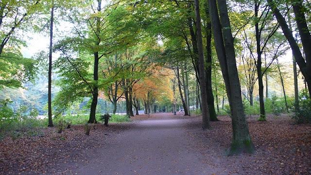 Outono em Hamburgo