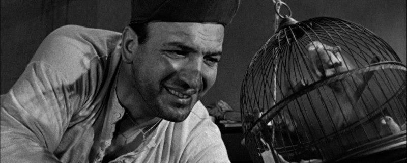 birdman of alcatraz review