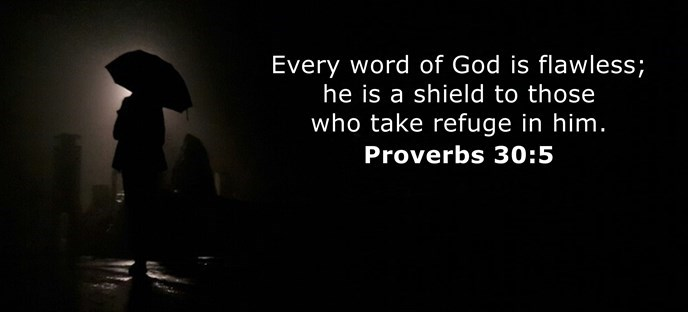 Every word of God is flawless; he is a shield to those who take refuge in him.