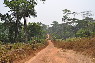 The roads of Guinea Forestière.