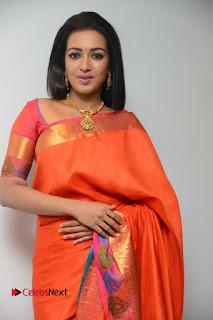 Actress Catherine Tresa Latest Pictures in Silk Saree  0010