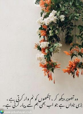 Woh Tasveer Dekh Ker, Ankhon Ko Numwar Kerti Hai,  Bari Nadaan Hai Jo Ab Bhi Hum Sa Piyaar Karti Hai..!!  #love #urdushayari