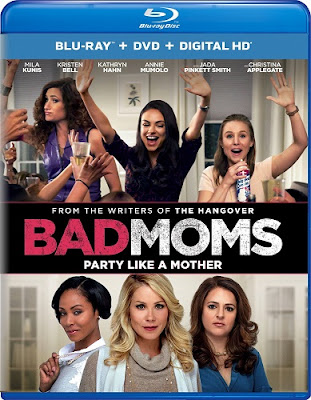 Bad Moms 2016 Eng BRRip 480p 300mb ESub