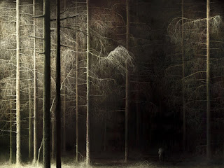 Dark Forest wallpaper