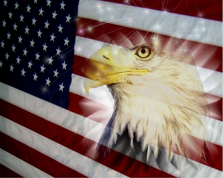 American Flag ~ Wallpaper & Pictures