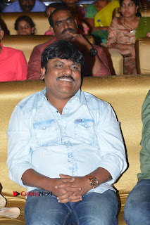 Nenu Local Audio Launch Stills  0097.JPG