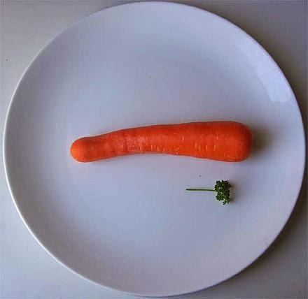 welche diät hilft wirklich