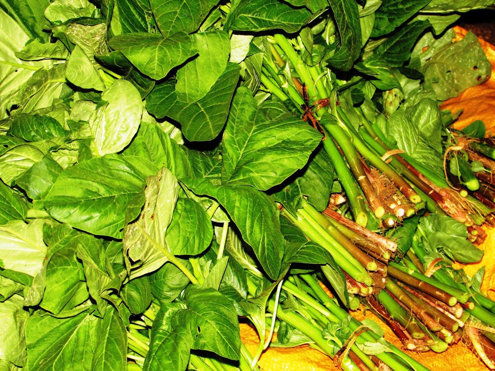 Foto daun bayam hijau