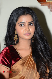Actress Anupama Parameswaran Stills in Silk Saree with Shatamanam Bhavati Team at Sandhya Theater  0014.JPG