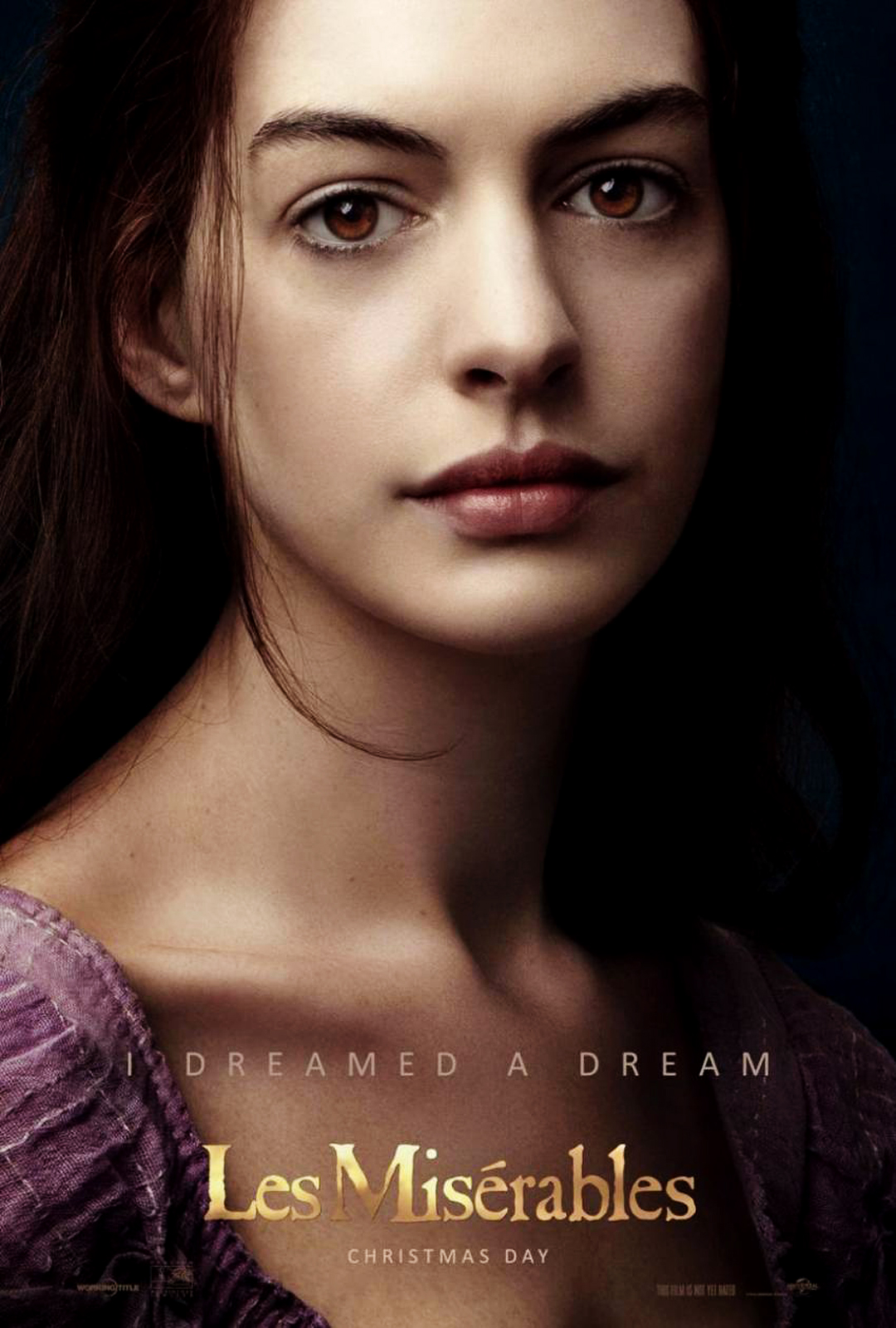 Anne Hathaway Award Les Miserables  Nude Naked Pussy Slip -9063
