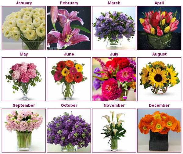 Flowers Seasons Are Intimately Bound To Each Other Most Of The Season Specific Though Some Found Throughout Year