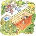 [移居台南] 原是「農業區」,現在被劃定變更為「住宅區」...