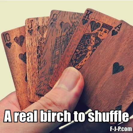 A Real Birch To Shuffle funny pun picture