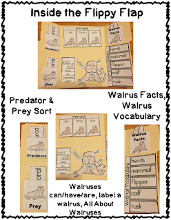 https://www.teacherspayteachers.com/Product/Walrus-Flippy-Flaps-Interactive-Notebook-Lapbook-2286874