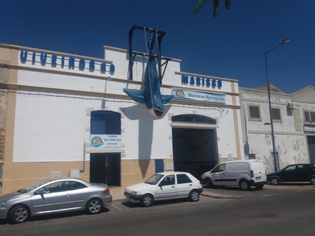 Viveiros de Marisco