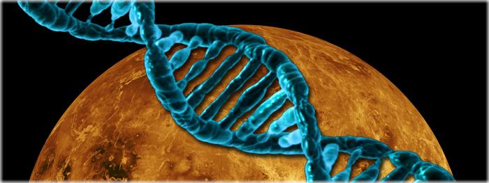 Vênus pode ter suportado vida
