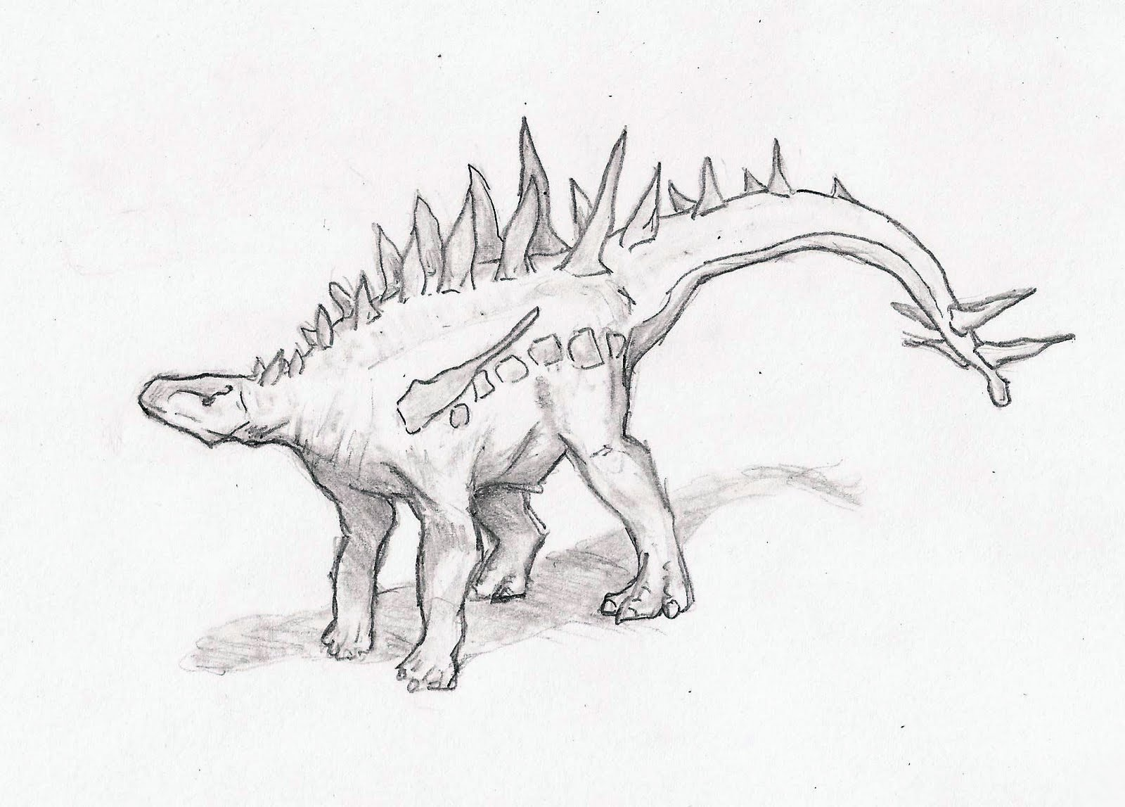 Extinct animal of the week may 2012 for Carcharodontosaurus coloring page