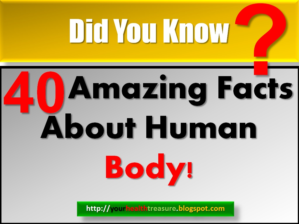 40 Interesting Facts About Human Body Health Treasure