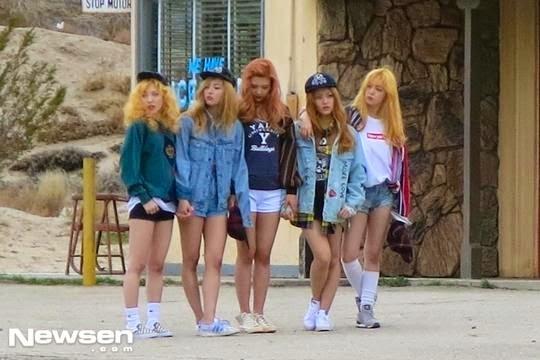 Ice Cream Cake Red Velvet Members