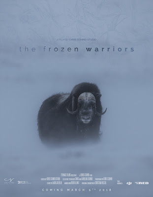 The Frozen Warriors (Los guerreros congelados) - Un cortometraje documental de Chris Schmid sobre el buey almizclero