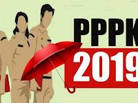 Astaga, Payung Hukum PPPK 2019 Belum Ada, Pantas Honorer K2 Belum Bisa Daftar
