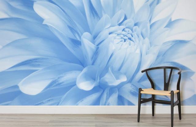 blå blommig tapet fondvägg