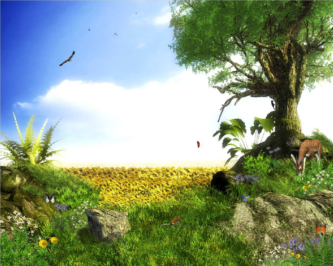 M M Desktop Wallpaper: Desktop Nature Wallpaper: 3d Animated Desktop, Free