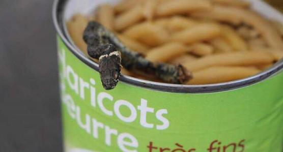 A Man Discovers A Snake In A Box Of Green Beans