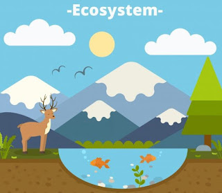 Ekosistem Buatan dan Aliran Energi dalam Ekosistem