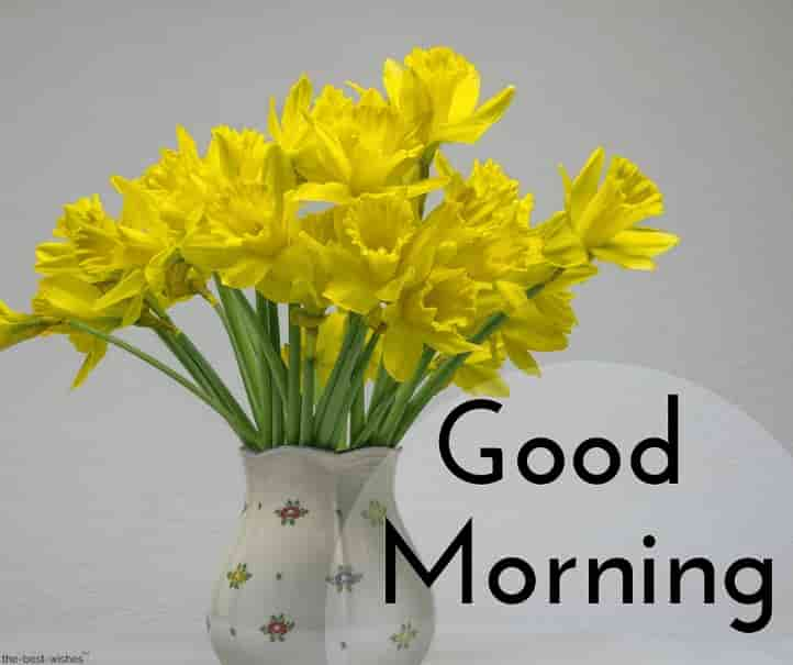 good morning with yellow flowers