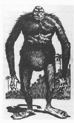 Yowie Sightings Unsolved Mysteries In The World