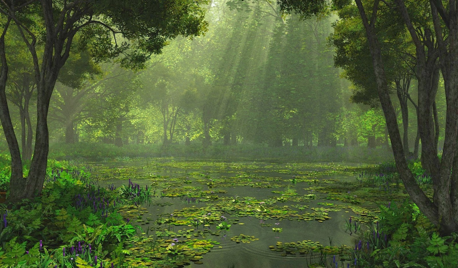 Nature Beauty Quotes Pinterest