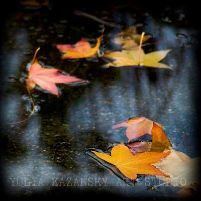 https://www.etsy.com/listing/86277061/autumn-leaves-nature-fall-fine-art?ref=favs_view_8
