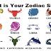 Your Zodiac Sign Tells A Lot Surprising About Yourself!